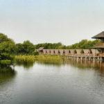 Taman Wisata Alam Angke Kapuk, Tempat Menyejukkan Diri Di Jakarta