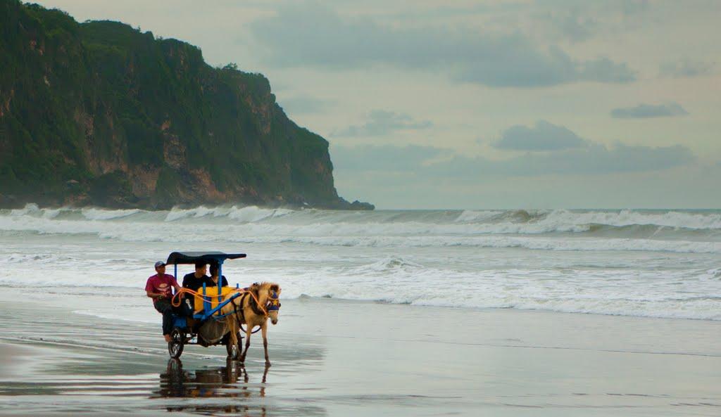 Panorama Pantai Parangtritis - Sumber: panoramio.com