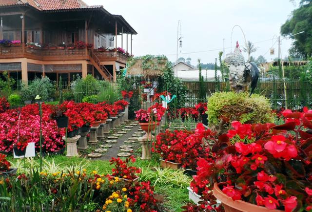 taman-begonia-lembang