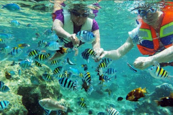 snorkeling di pulau tidung